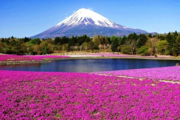 Keindahan Tanpa Batas Di Puncak Gunung Fuji Jepang